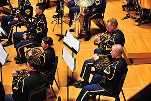 A horn section in a military concert band
